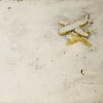 飛行機のカゲ